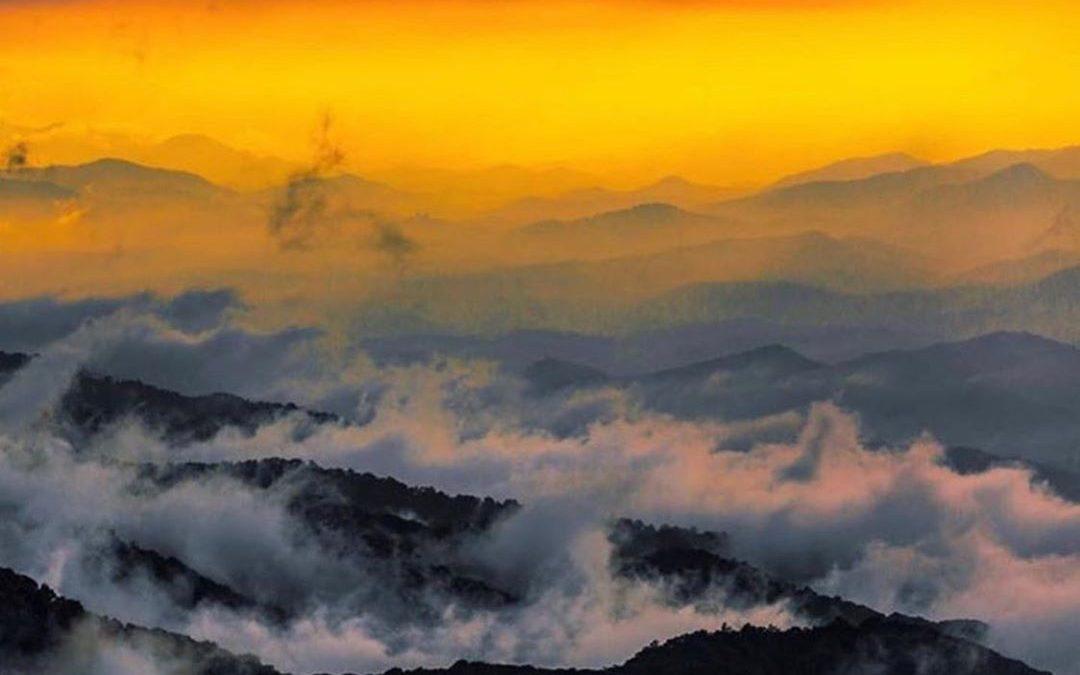 The Morning Devotional: Psalm 119:143-144